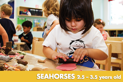 Seahorses - Kids on 4th Child Care & Kindergarten
